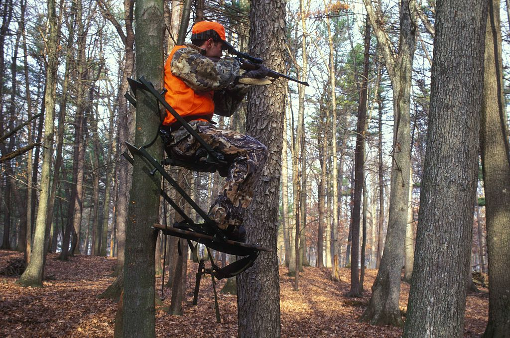 Earth To Hunting Shows… Come In, Hunting Shows.